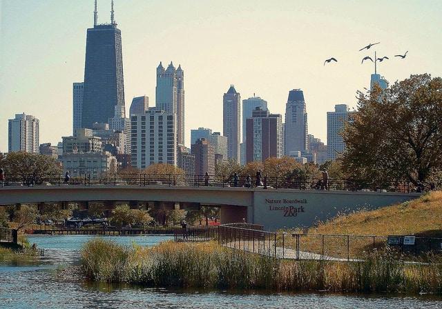 Зоопарк «Линкольн-парк» - достопримечательности Чикаго