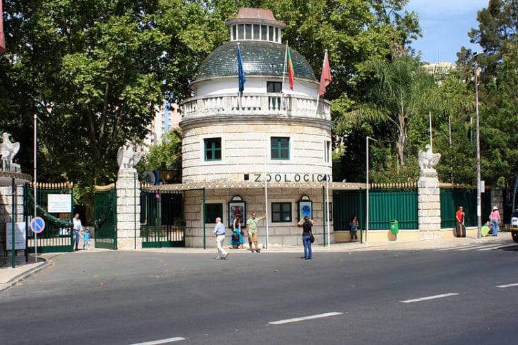 Лиссабонский зоопарк - достопримечательности Лиссабона