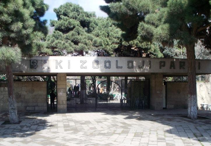 Что посмотреть в Баку - Бакинский зоопарк