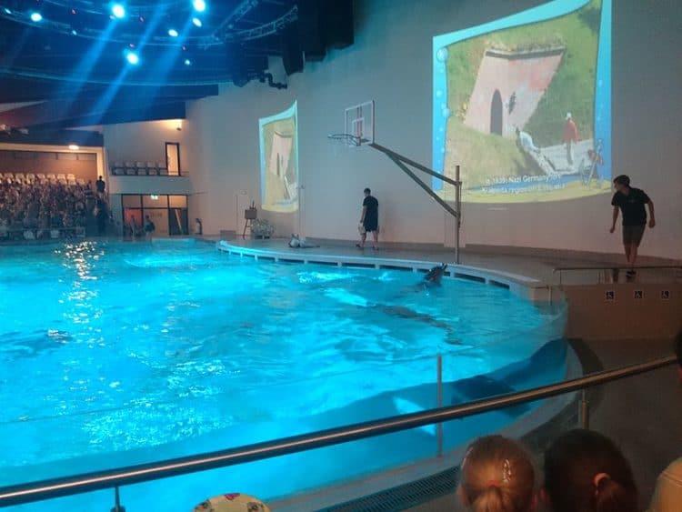 Литовский морской музей–аквариум в Литве