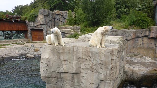 Зоопарк Ганновера - Что посмотреть в Ганновере