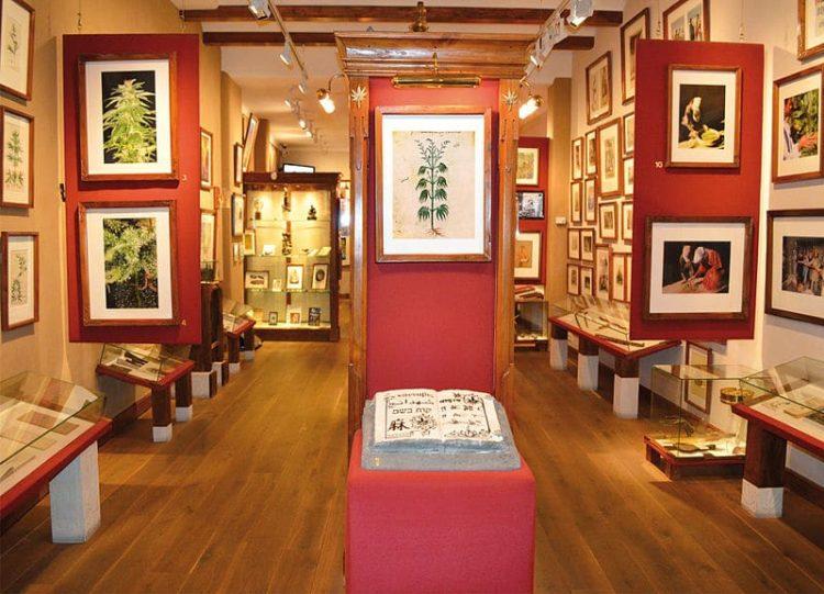 Музей конопли в Нидерландах