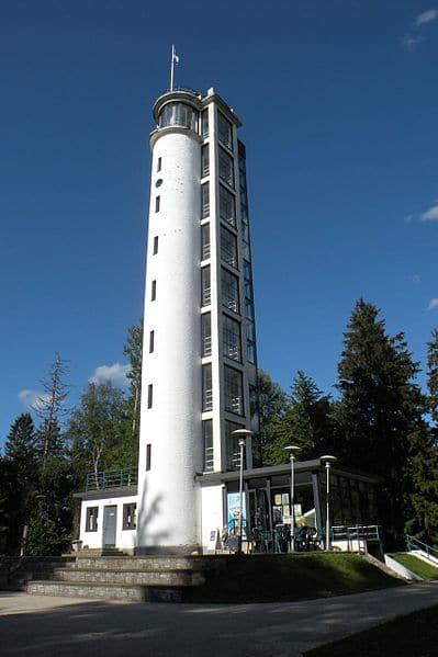 Смотровая башня Суур-Мунамяги в Эстонии
