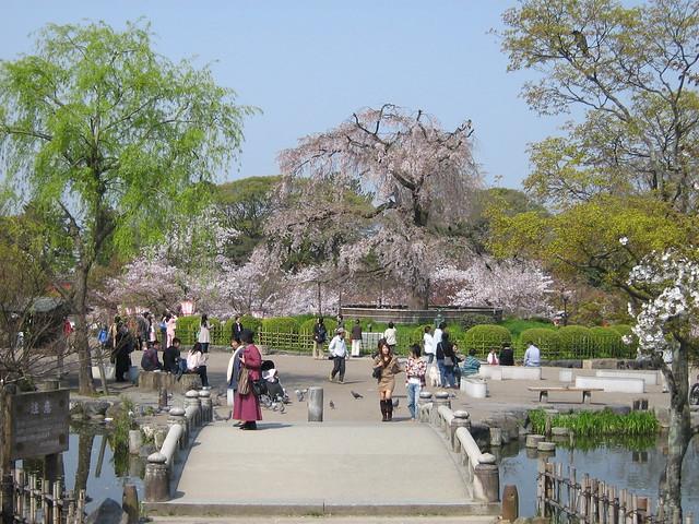 Парк Маруяма в Японии