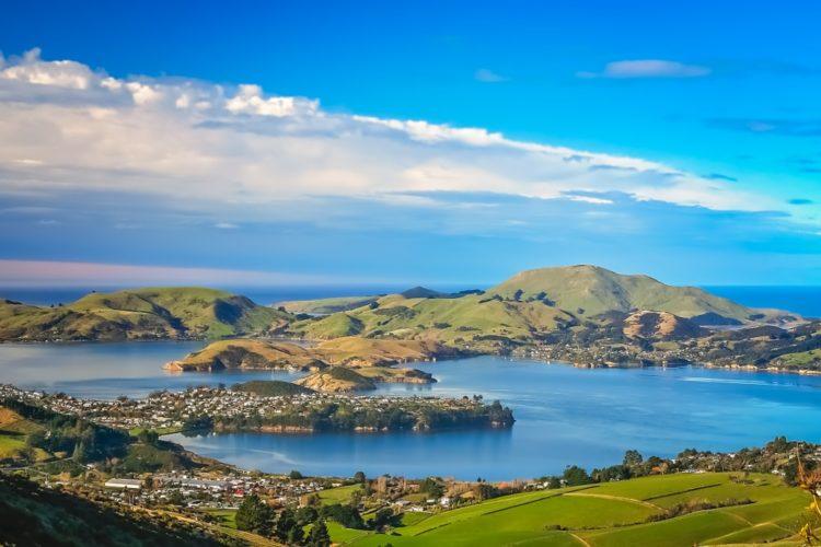 Полуостров Отаго в Новая Зеландии