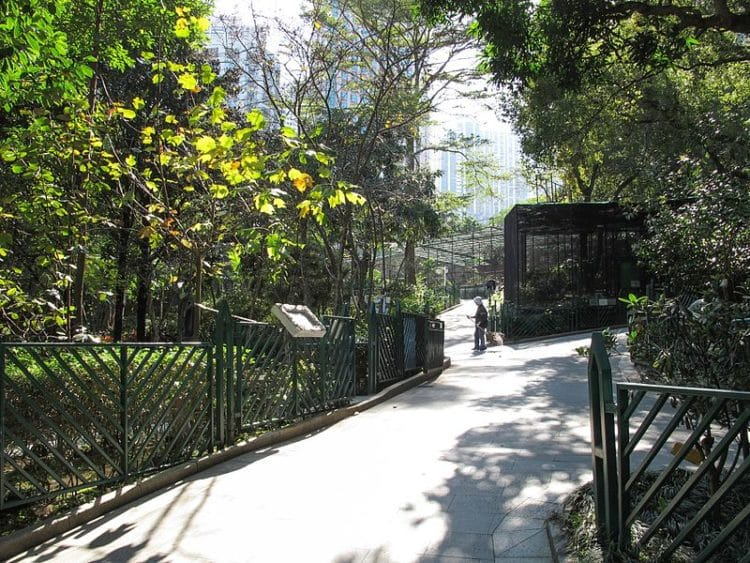 Зоопарк и ботанический сад в Китае