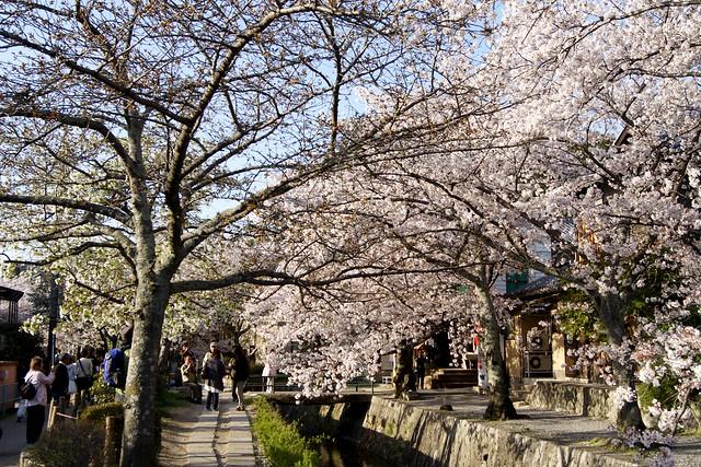 Философская тропа (Тэцугаку-но-мити) в Японии