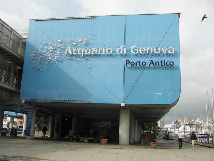 Аквариум - достопримечательности Генуи