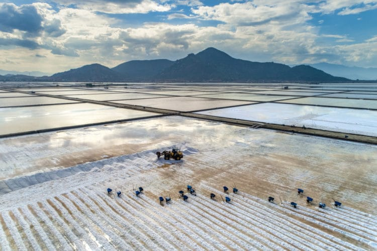 Соляные плантации Хон Кхой - достопримечательности Нячанга
