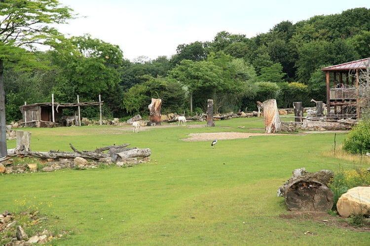 Лейпцигский зоопарк - достопримечательности Лейпцига