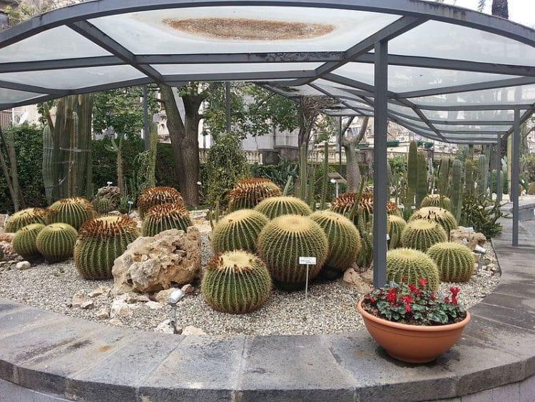 Ботанический сад - достопримечательности Катании