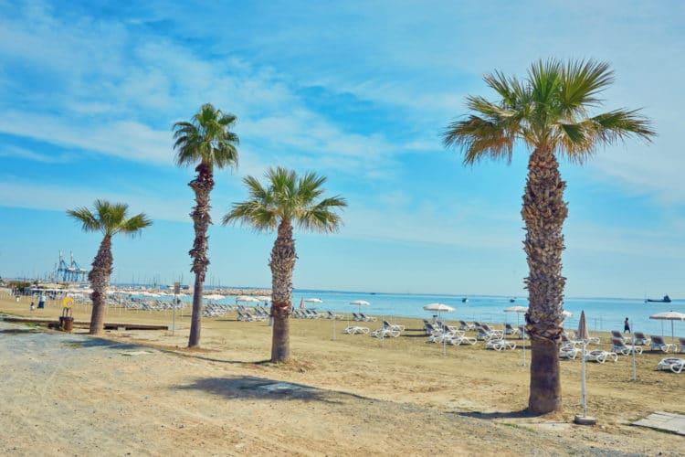 Пляж Финикудес - достопримечательности Ларнаки
