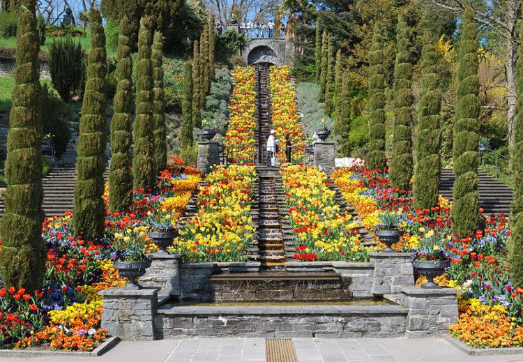 Домтопримечательности Германии - Остров цветов Майнау